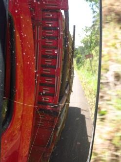 Sur la route de Morro de Sáo Paulo