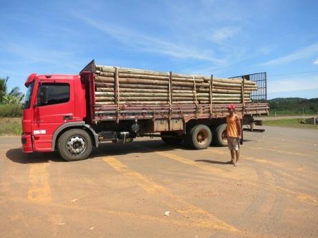 Avec notre transporteur de bois