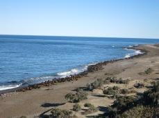 Punta Norte