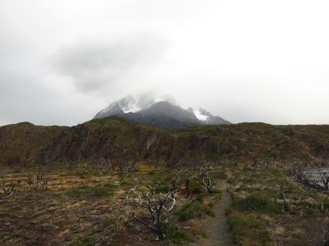 Le Paine Grande se cache