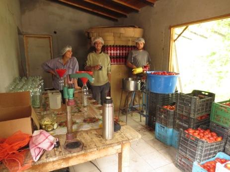 Atelier sauce tomate