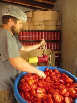 Julian mixe les tomates