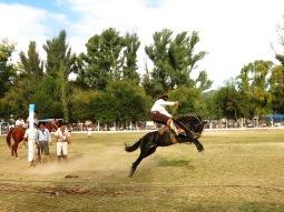 Rodéo de gaucho à Guachipas