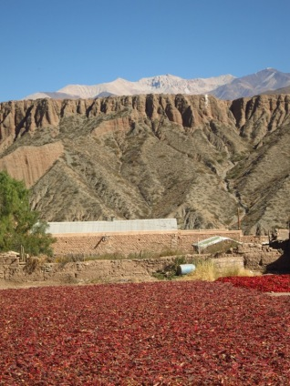 Le piment qui sèche devant la Nevada de Cachi