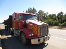 Camion qui nous a pris en stop sur 60km