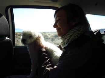 En route pour le Perito Moreno