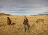 Caroline et les lamas