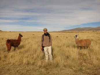Grégory et les lamas sur l'Altiplano