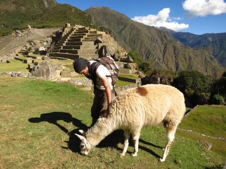 Grégory et un lama