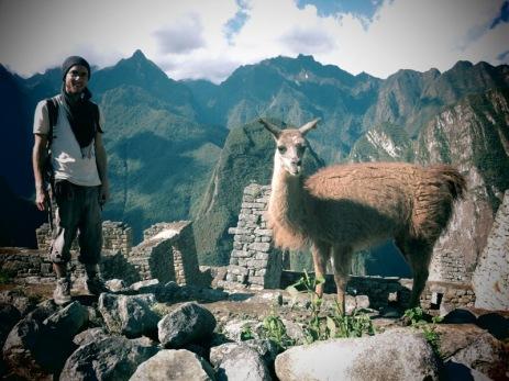 Grégory et un autre lama