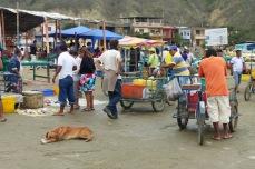 Au marché de Puerto Lopez