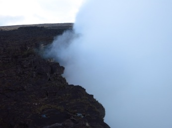 Dans les nuages du Roraima